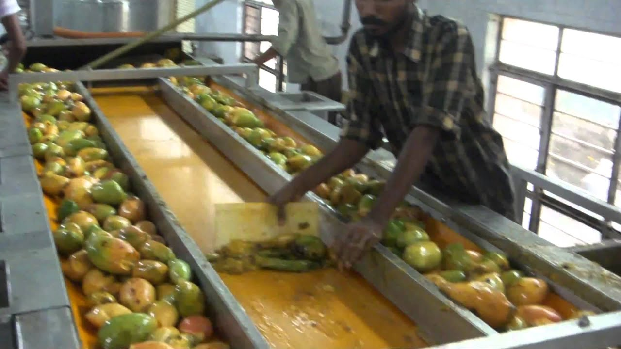 Organic mango pulp manufacturing process youtube for Food bar manufacturers