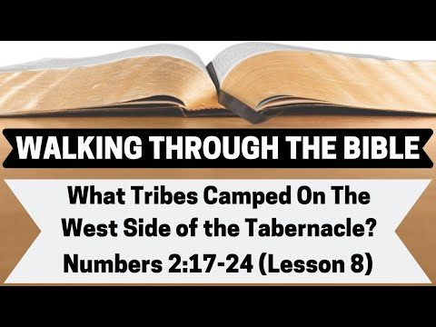 What Tribes Camped On The West Side Of The Tabernacle? [Numbers 2:17-24][Lesson 8][WTTB]