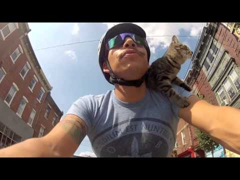 Thumbnail for Cat Video Cat Riding a Bike
