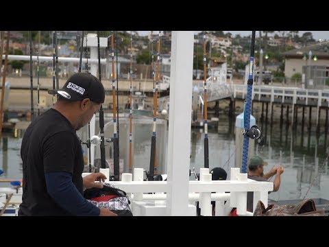 Wide Open Bonito Bite! -- Dolphin Sportfishing