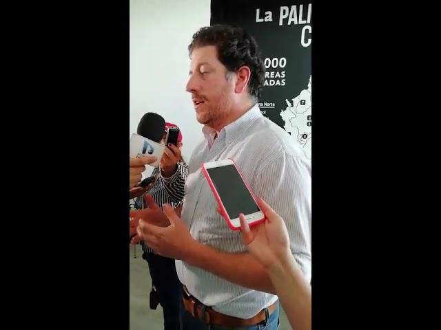 Viceministro de Desarrollo Rural habla sobre el estado de la palma en Colombia