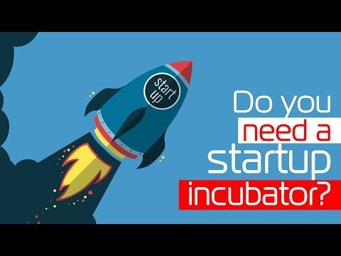 Do you need a startup incubator?