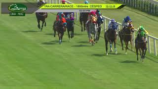 Vidéo de la course PMU HANDICAP 1800
