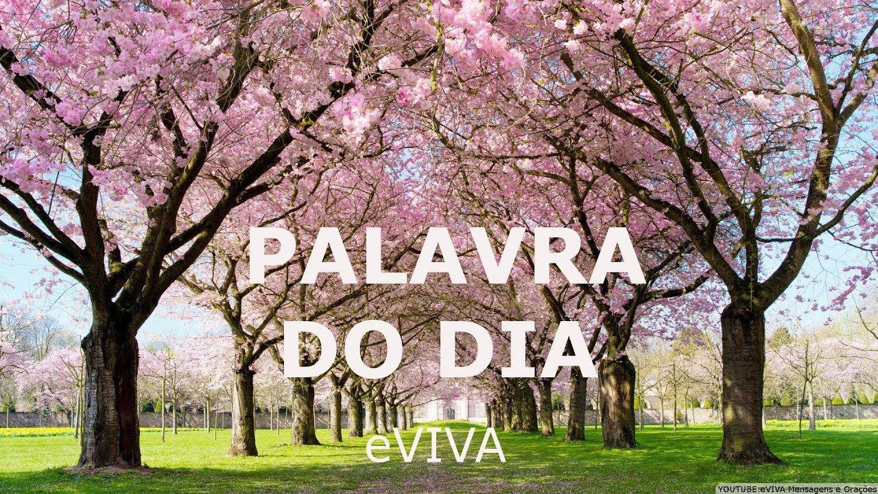 PALAVRA DO DIA 07/03/2019