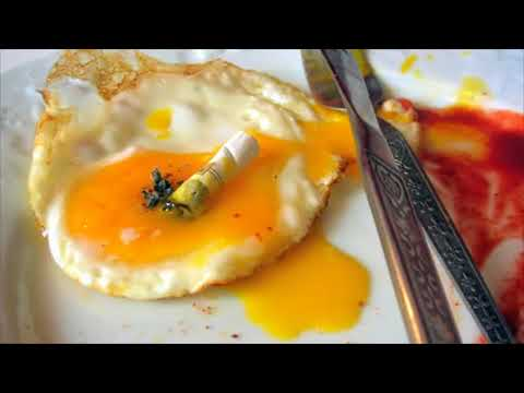 Why I Quit Eggs
