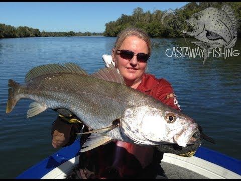Jew Fishing On Castaway Charters, Port Macquarie
