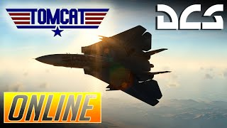 DCS:  F-14 Tomcat Everyone Hides when the Tomcat Takes Off.