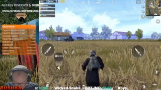 SQUADS WITH SUBS SNAKE & MATES WILD PUBG MOBILE