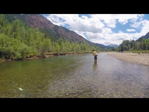Mountain Whitefish Fly Fishing