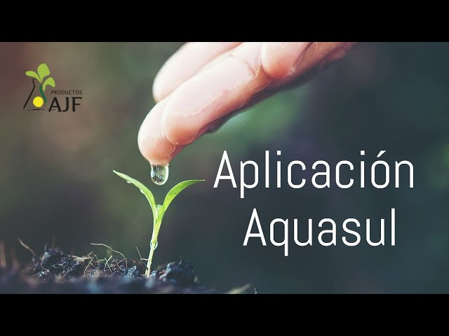 Multimídia - Productos AJF