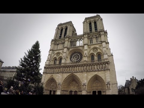 Walking Around Quai Saint-Michel and Notre-Dame de Paris
