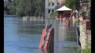 Wysoka woda w Gorzowie - po bulwarze pływają... rybki