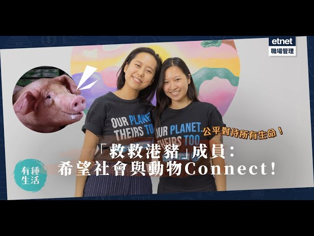 用平等目光對待所有生命!「救救港豬」成員:希望社會與動物connect及建立關係!