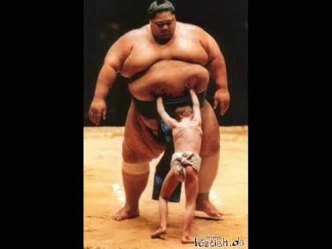 Bildergebnis für sumoringer