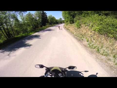 longboarding eagle river, ak all day with yamaha R1 chasing