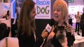 Crufts 2009 - Miniature Schnauzer Rescue