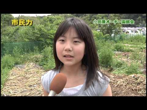 市民力 Vol.6 「JAかながわ西湘小田原オーナー園部会」