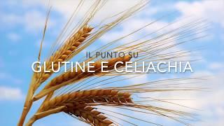 Il punto su glutine e celiachia