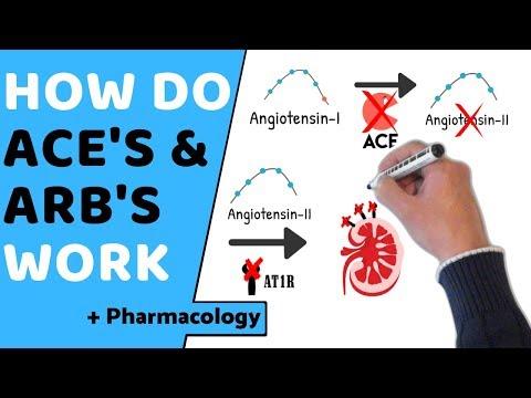 How Do ACE & ARB's Work? (+ Pharmacology)