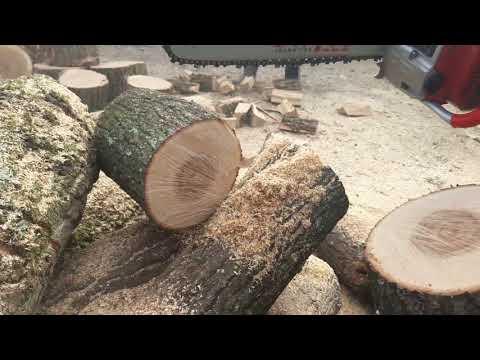 Drujba Voinic taie lemne pentru iarnă