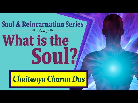 What Is The Soul? QA Soul And Reincarnation Series   Chaitanya Charan