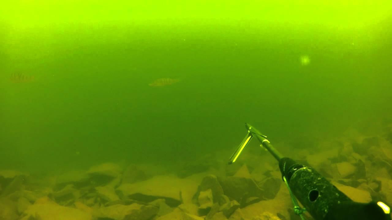 подводная рыбалка на красноярском море видео