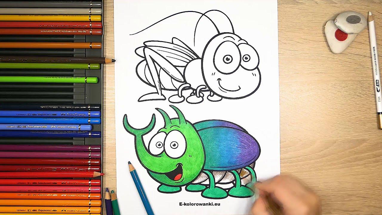 Kolorowanki Do Druku Owady Obrazki Z Owadami Robakami