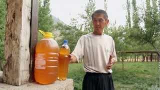 養蜂がキルギスの土地劣化を軽減