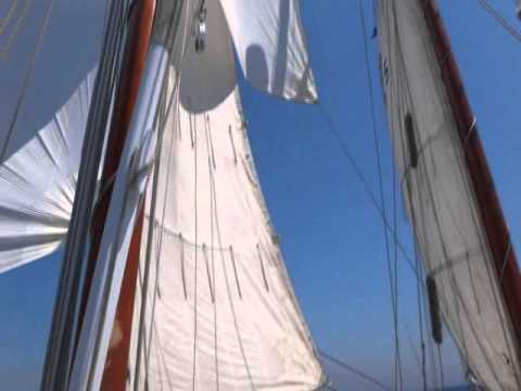 All sails up !