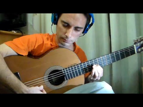 Johann Sebastian Bach - The musical offering - Guitar Cover