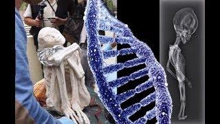 """ESCLUSIVO!! Risultati delle analisi sul DNA delle Mummie di Nazca rivelano che """"NON SONO UMANE"""""""