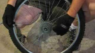 How-to remove a bicycle freewheel or cassette
