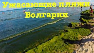 Шокирующий пляж, Солнечный Берег, Болгария(Планируйте свой отдых правильно. Как сказали местные, такой вид вы застанете, если приедете в Болгарию в..., 2016-08-05T07:24:40.000Z)