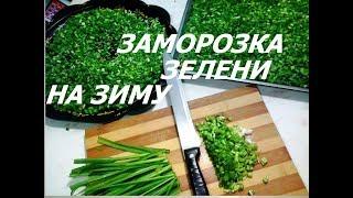 Как заморозить зелень на зиму Как хранить открытый томатный сок
