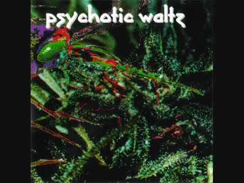 Psychotic Waltz  Mosquito