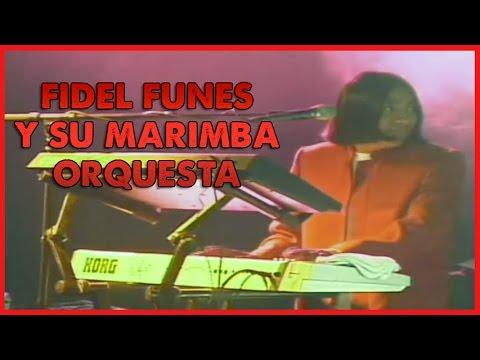 Download Fidel Funes y su Marimba Orquesta - Concierto De Plata