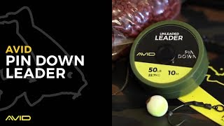 AVID CARP - Pin Down Leader