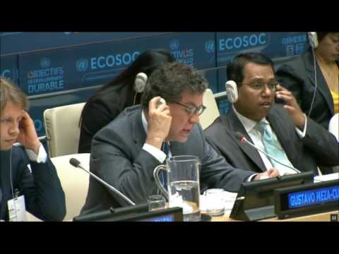 2017 Integration Segment of the UN Economic and Social Council - 25th meeting, ECOSOC, 2017 session