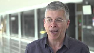 Cytogenetics, TP53 and immunoglobulin genes: exciting areas of research for CLL