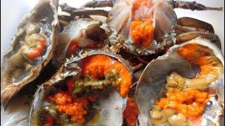 น๊อตโตะ-ยำปากบาน-ep-17-ปูไข่ดองน้ำปลา-มาแล้วไม่สั่งถือว่าพลาด-ชุดละ250บาท-ถูกเวอร์