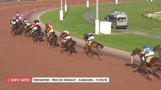 Vidéo de la course PMU PRIX DE CROUAY