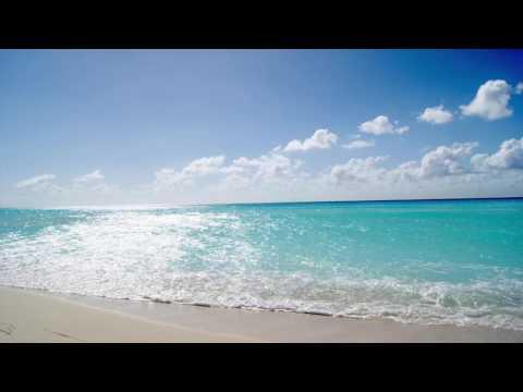 Adultswim bump - The Sparkling sea Part 4