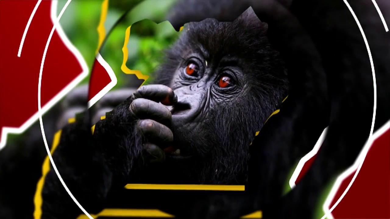 Download UGANDA EKKULA  AMAKUBO AGENJAWULO AGALI MU KKUUMIRO LY'EBISOLOAB