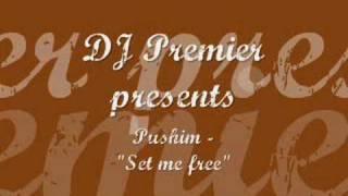 DJ Premier & Pushim - Set me free
