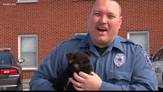 New dog on duty for Troy police