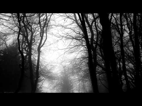 Forest Of Shadows - The Silent Cry