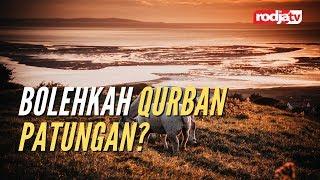 Sketsa Tanya Jawab: Bolehkah Qurban Patungan l Ustadz Abu Yahya Badru Salam, Lc.