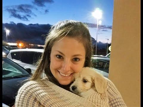 Boyfriend Surprises Girlfriend with Puppy!