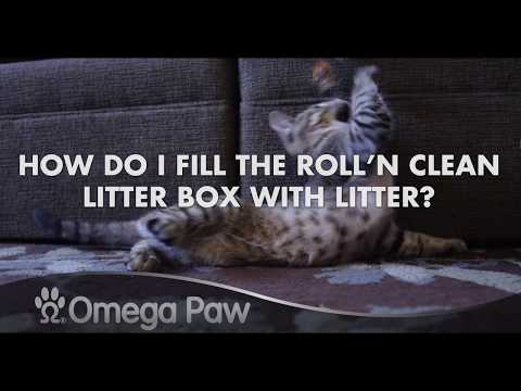 Omega Paw Roll'n Clean FAQ: How Do I Fill The Litter Box With Litter?