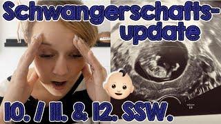 Schwangerschaftsupdate 10. / 11. & 12. SSW. | Diagnose: drohende Fehlgeburt 🏥😢
